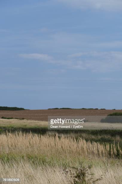scenic view of field against sky - howard,_wisconsin stock pictures, royalty-free photos & images