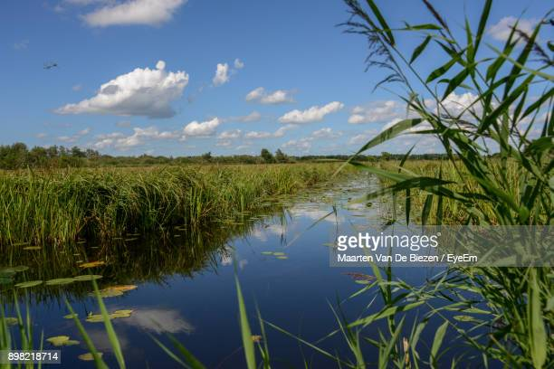 scenic view of field against sky - giethoorn stock pictures, royalty-free photos & images