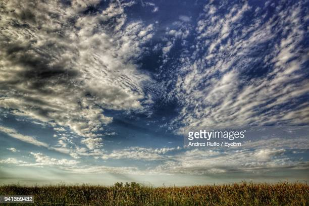 scenic view of field against sky - andres ruffo stock-fotos und bilder