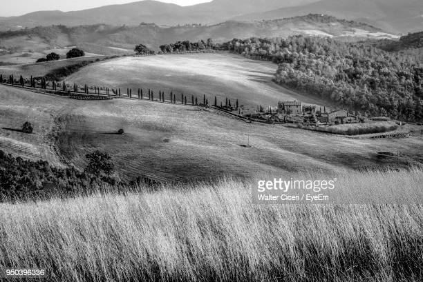scenic view of field against sky - walter ciceri foto e immagini stock