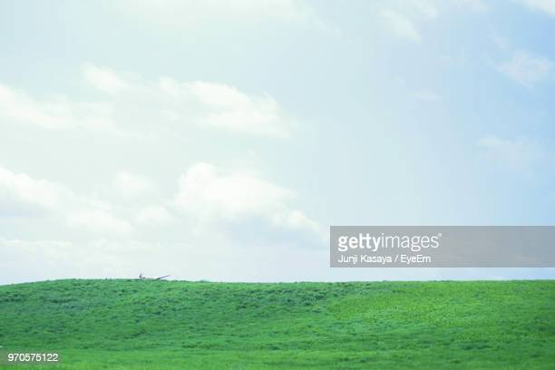 scenic view of field against sky - horizon over land stockfoto's en -beelden