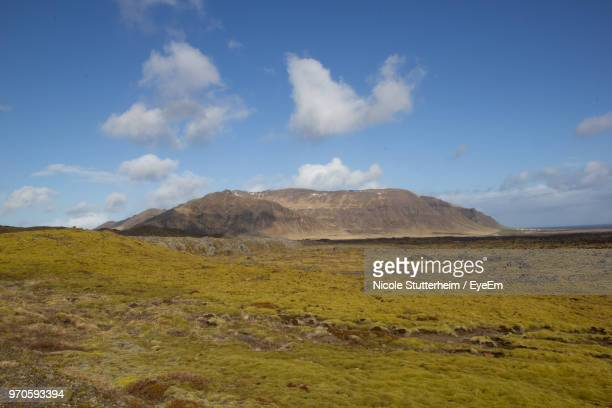 scenic view of field against sky - stutterheim stock pictures, royalty-free photos & images