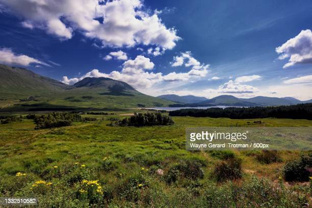scenic view of field against sky,ballachulish,united kingdom,uk - wayne gerard trotman stock pictures, royalty-free photos & images