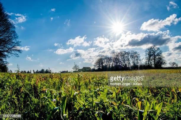 scenic view of field against sky,hattingen,germany - norbert zingel stock-fotos und bilder