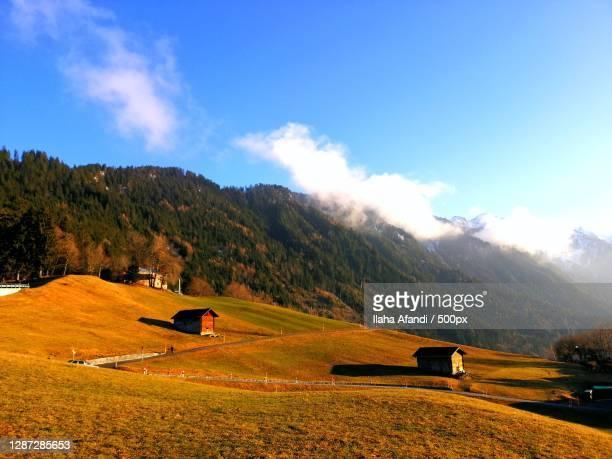 scenic view of field against sky,liechtenstein - principality of liechtenstein stock pictures, royalty-free photos & images