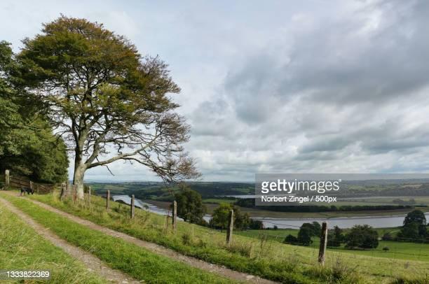 scenic view of field against sky,saltash,united kingdom,uk - norbert zingel stock-fotos und bilder