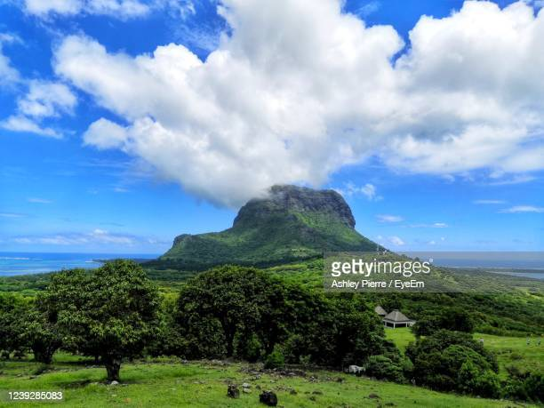 scenic view of field and mountain  against sky - named animal ストックフォトと画像