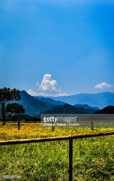 scenic view of field and mountains against blue sky - nuevo leon stock pictures, royalty-free photos & images
