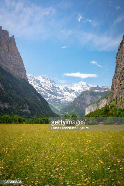 scenic view of field and mountains against sky - lauterbrunnen - fotografias e filmes do acervo