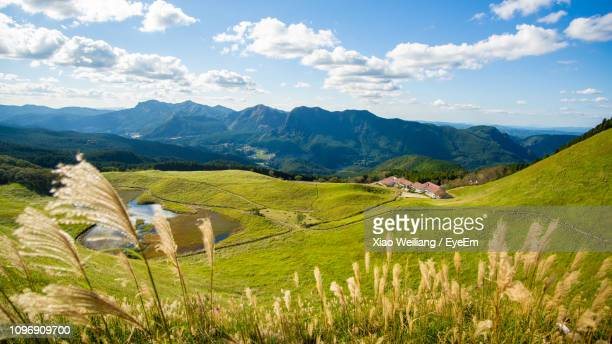 scenic view of field and mountains against sky - 奈良市 ストックフォトと画像