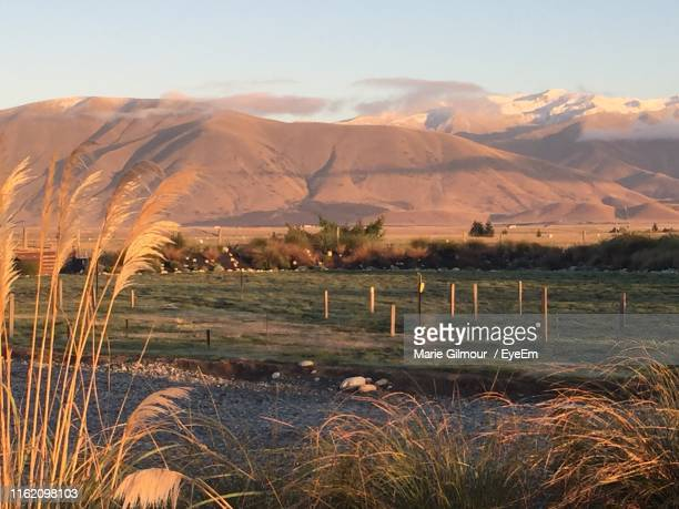 scenic view of field and mountains against sky - mackenzie country fotografías e imágenes de stock