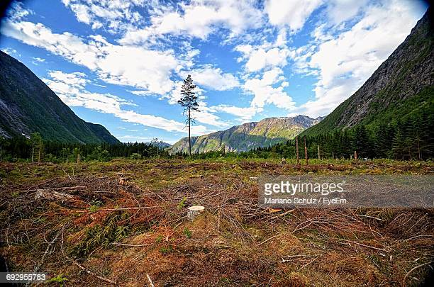 scenic view of field and mountains against sky - deforestation stock pictures, royalty-free photos & images
