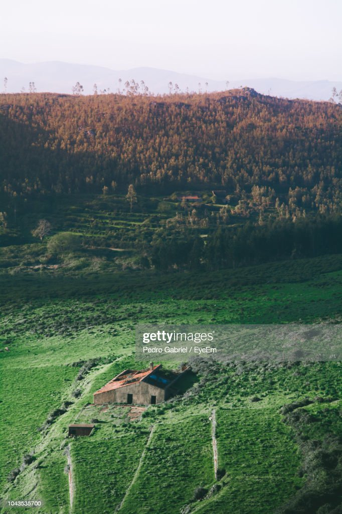 Scenic View Of Field By Trees And Houses Against Sky : ストックフォト