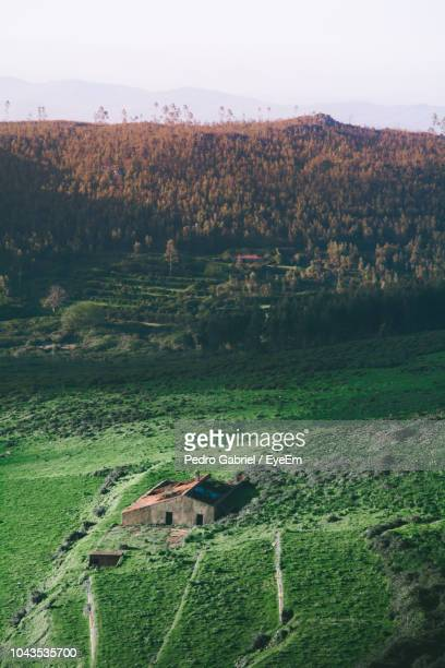 scenic view of field by trees and houses against sky - monchique stock pictures, royalty-free photos & images