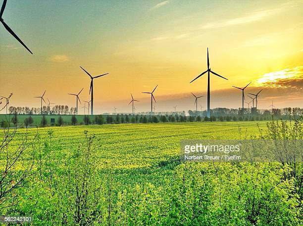 Scenic View Of Field With Windmill Against Sky During Sunset