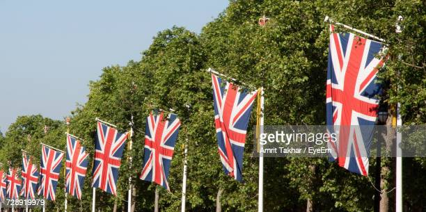 Scenic View Of Flags Against Trees