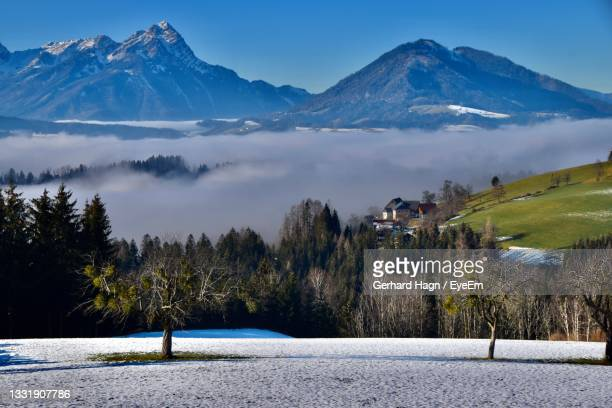 scenic view of foggy valley with trees and snowcapped mountains against sky - gerhard hagn stock-fotos und bilder