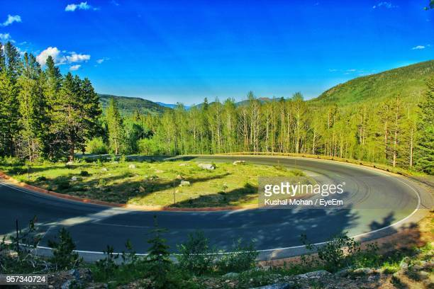Scenic View Of Forest Against Blue Sky