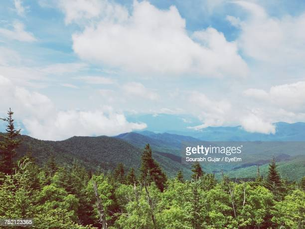 scenic view of forest against sky - parque nacional das great smoky mountains - fotografias e filmes do acervo