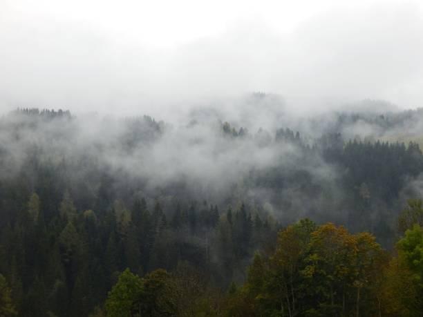 Scenic View Of Forest Against Sky, Sankt Lambrecht, Austria