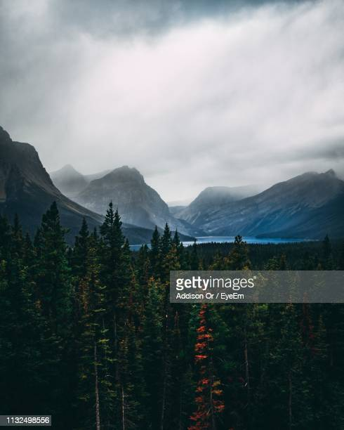 scenic view of forest and mountains against cloudy sky - {{asset.href}} stock-fotos und bilder