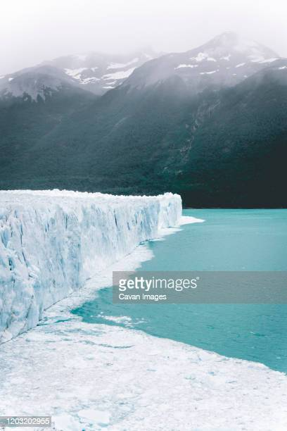scenic view of front of perito moreno glacier above water - 氷河湖 ストックフォトと画像