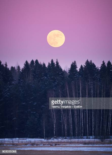 Scenic View Of Full Moon Against Purple Sky