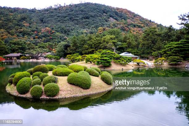 scenic view of garden by lake - saka stock pictures, royalty-free photos & images