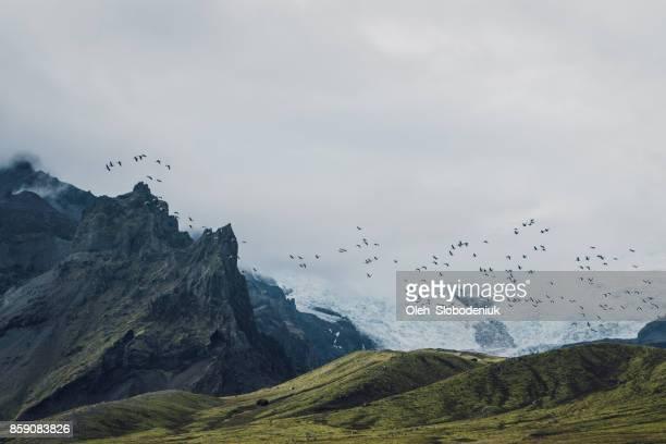 Schilderachtig uitzicht op de gletsjer in Bergen