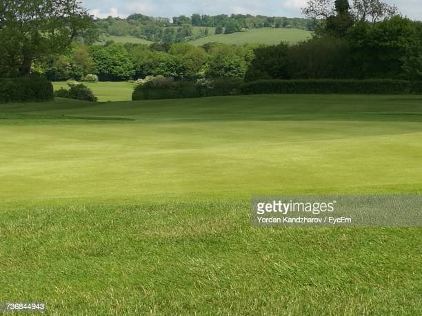 scenic view of golf course - green golf course stock photos and pictures