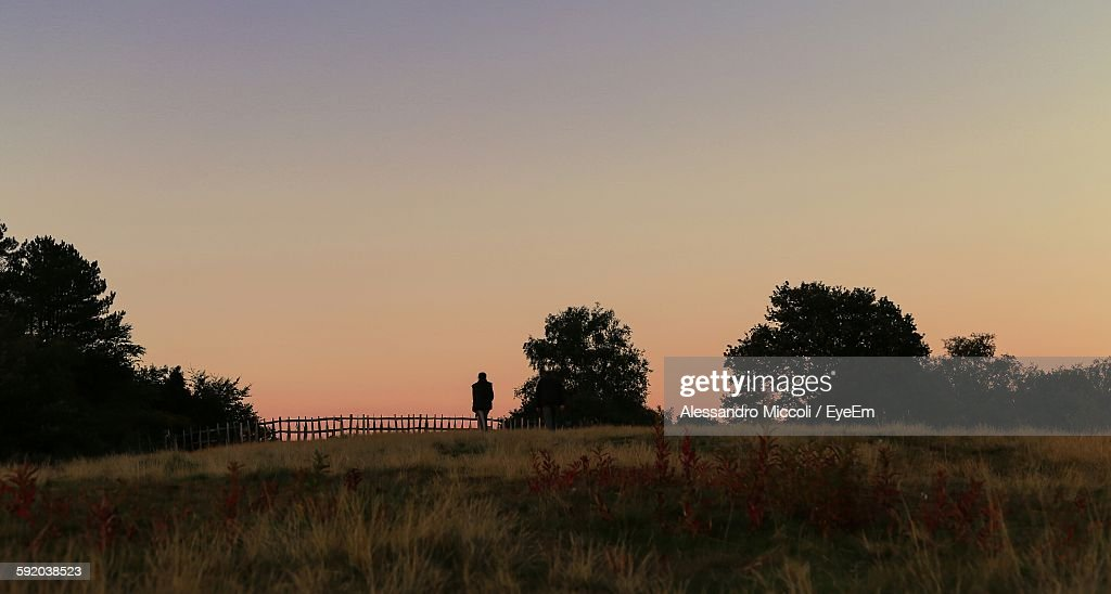 Scenic View Of Grassy Field Against Clear Sky During Sunset : Foto de stock