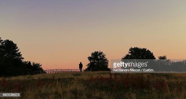 scenic view of grassy field against clear sky during sunset - alessandro miccoli stock pictures, royalty-free photos & images