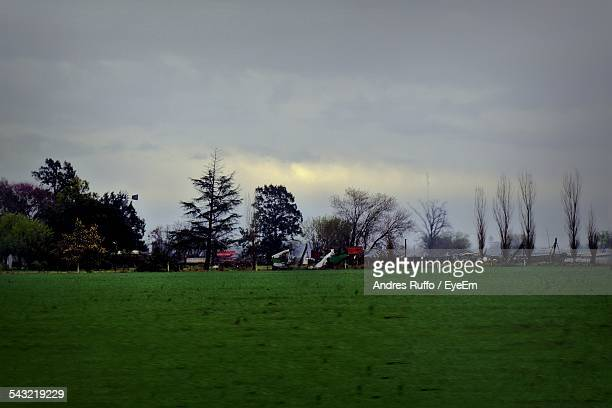 scenic view of grassy field against cloudy sky - andres ruffo stock-fotos und bilder