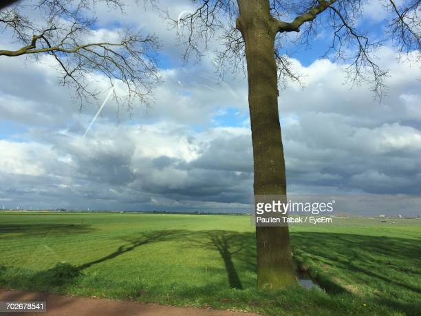 scenic view of grassy field against cloudy sky - paulien tabak 個照片及圖片檔