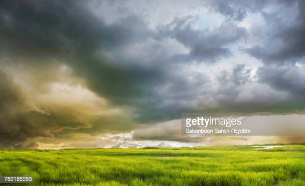 Scenic View Of Grassy Field Against Dramatic Sky