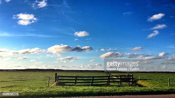 Scenic View Of Grassy Field Against Sky During Sunny Day
