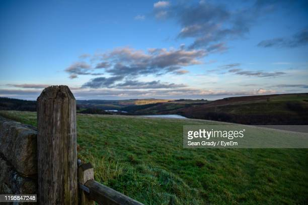 scenic view of grassy field against sky - sheffield stock pictures, royalty-free photos & images