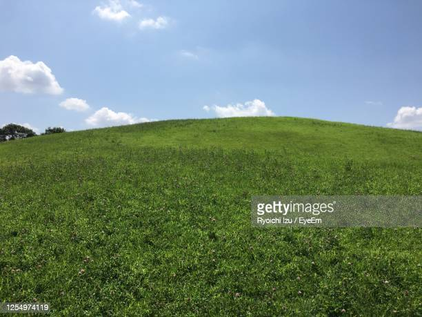 scenic view of grassy field against sky - encosta imagens e fotografias de stock