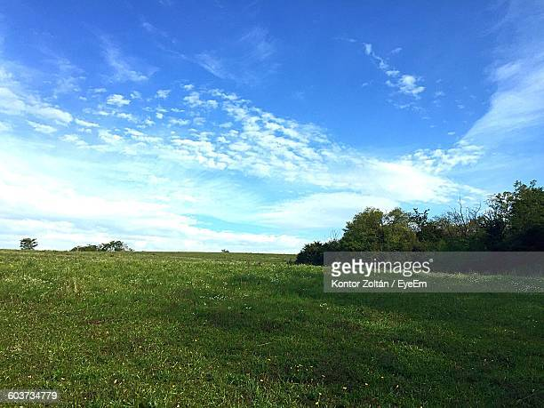 scenic view of grassy field against sky - kontor stock pictures, royalty-free photos & images