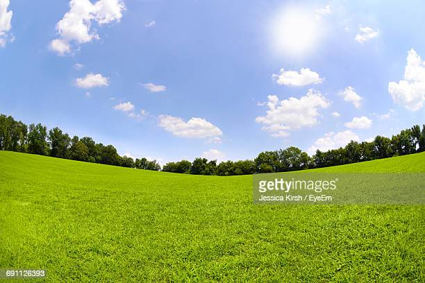 scenic view of grassy field against sky - 魚眼撮影 ストックフォトと画像