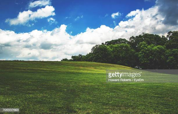 scenic view of grassy field against sky - norristown stock pictures, royalty-free photos & images