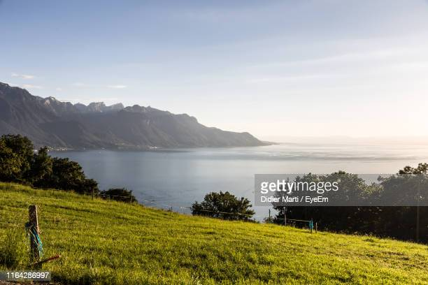 scenic view of grassy field by lake against sky - didier marti stock photos and pictures