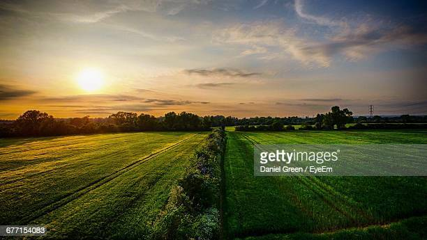 scenic view of grassy landscape against sky during sunset - aylesbury stock photos and pictures