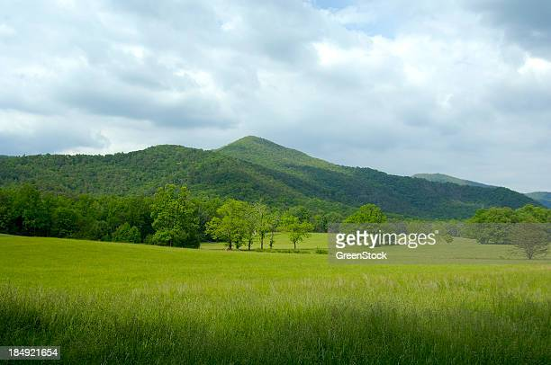 Scenic view of Great Smoky Mountains National Park