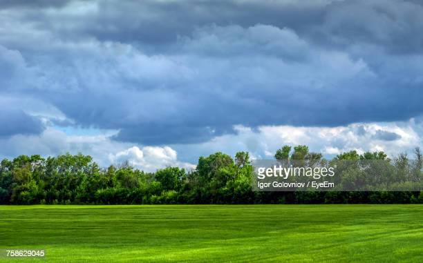 scenic view of green field against sky - igor golovniov stock pictures, royalty-free photos & images