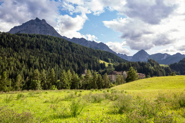 Scenic view of green forested Engadin valley with hotel in background