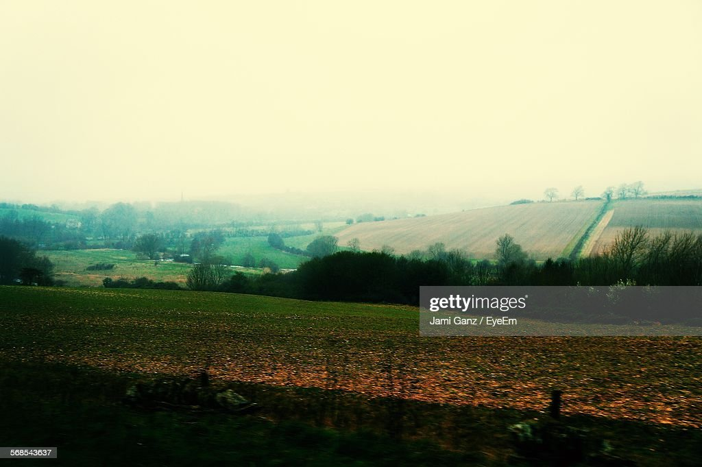Scenic View Of Green Landscape Against Clear Sky : Stock Photo