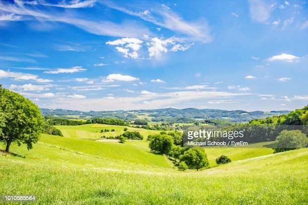 scenic view of green landscape against sky during sunny day - 青々とした ストックフォトと画像