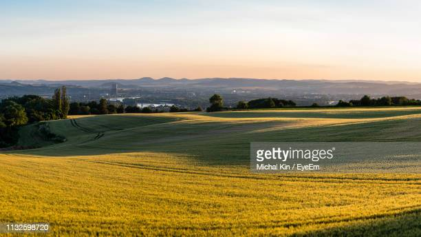 scenic view of green landscape against sky during sunset - コブレンツ ストックフォトと画像