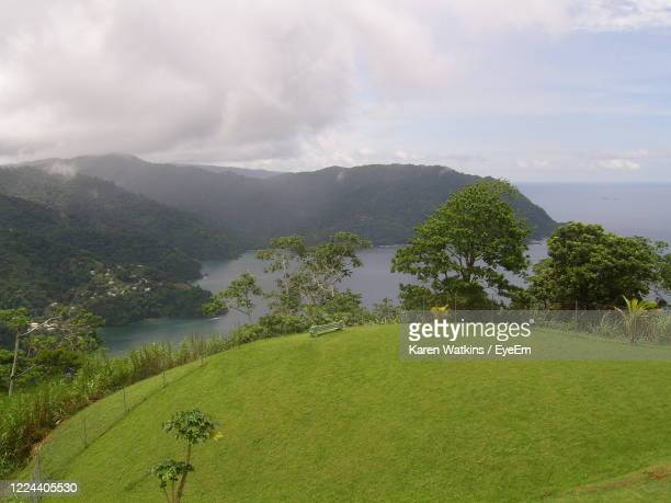 scenic view of green landscape against sky - trinidad and tobago stock pictures, royalty-free photos & images
